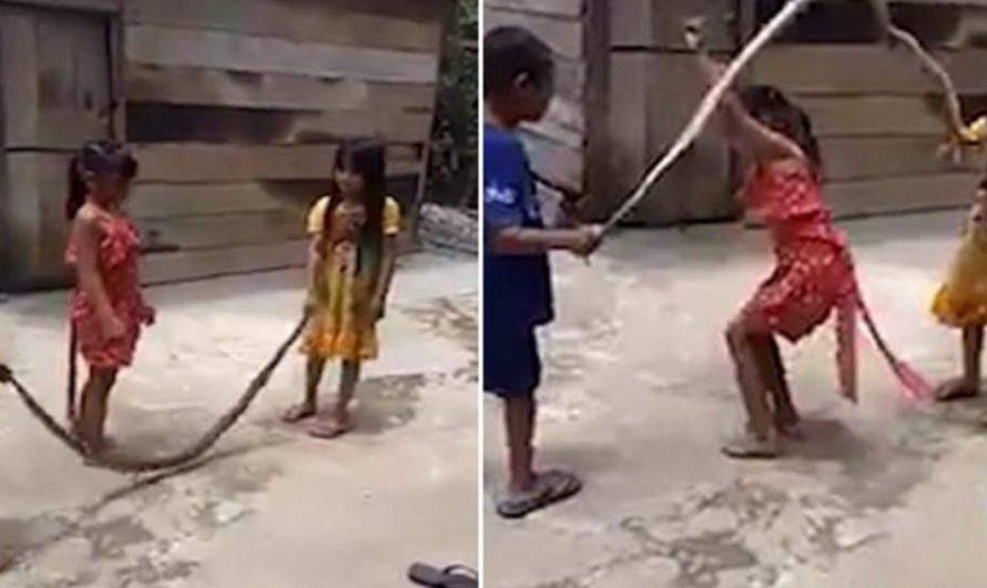 Niños saltan la cuerda con una serpiente: ¡VÍDEO IMPACTANTE!
